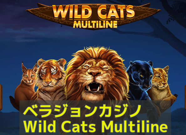 ベラジョンカジノ Wild Cats Multilineの紹介